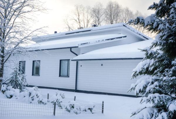 Talonäyttely 1.2.2019 Palokan Heinämäessä klo. 17-19 17